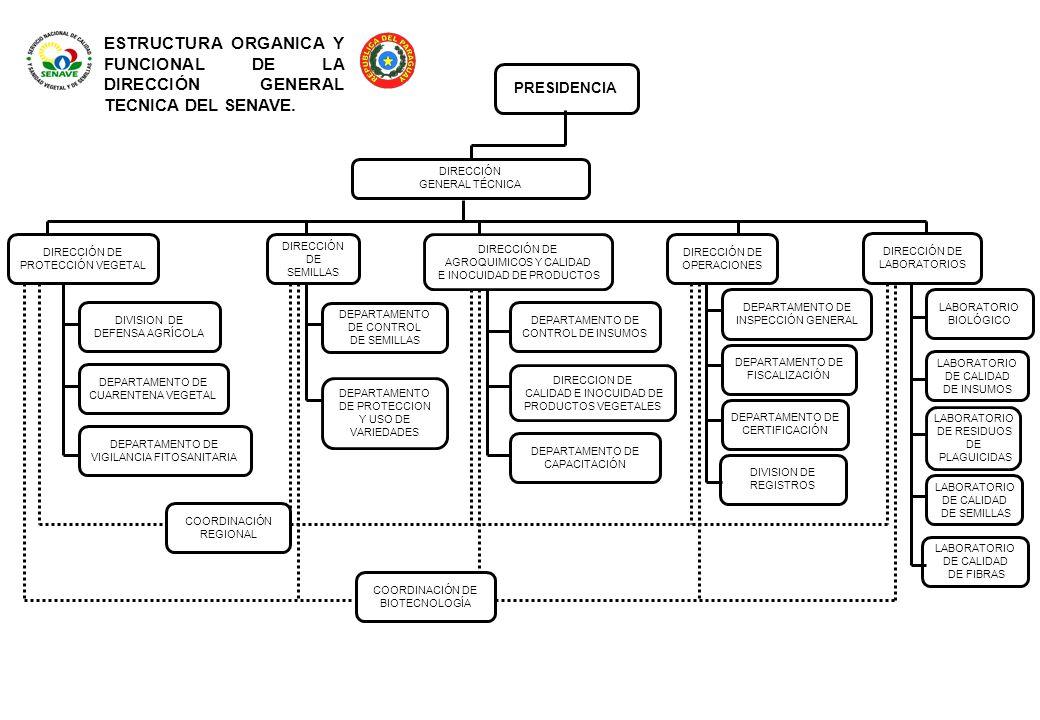 ESTRUCTURA ORGANICA Y FUNCIONAL DE LA DIRECCIÓN GENERAL TECNICA DEL SENAVE.