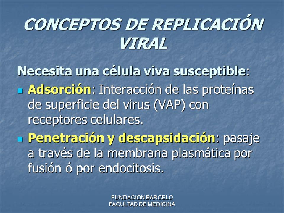 CONCEPTOS DE REPLICACIÓN VIRAL