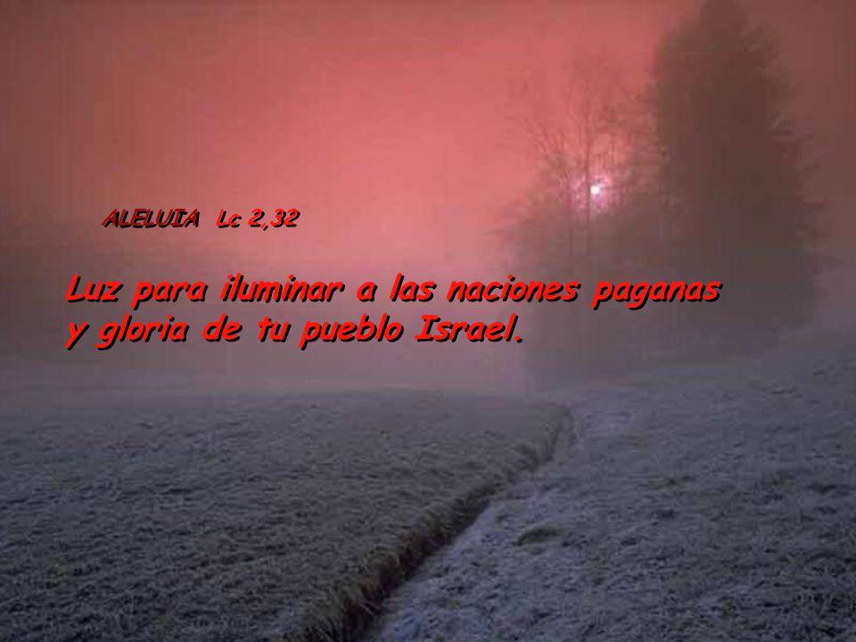 Luz para iluminar a las naciones paganas y gloria de tu pueblo Israel.