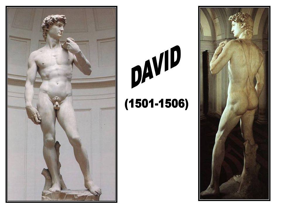 DAVID (1501-1506)