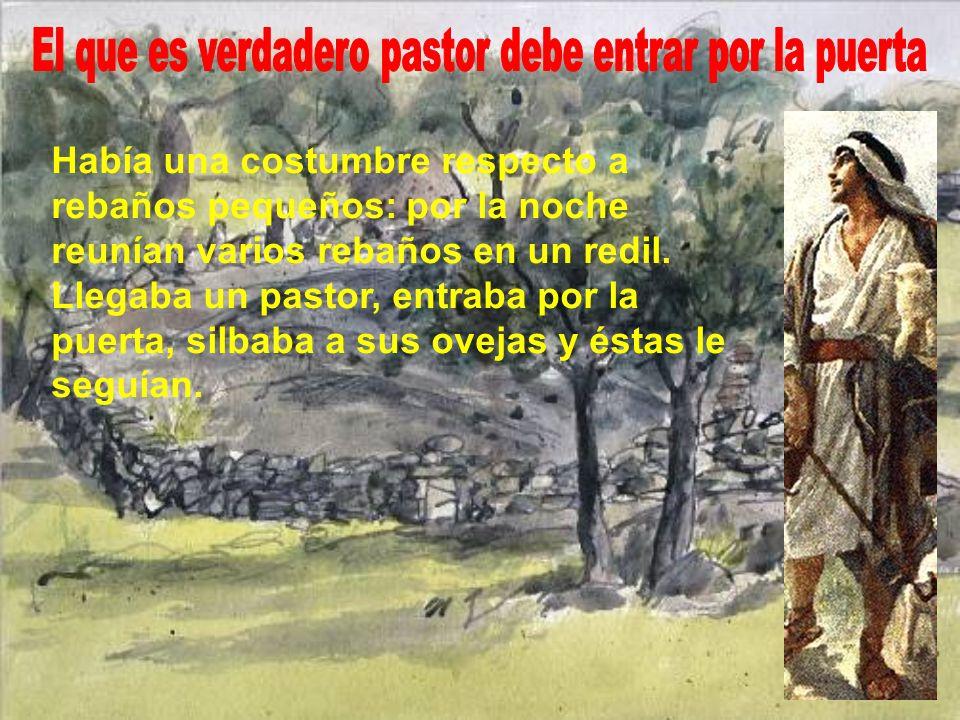 El que es verdadero pastor debe entrar por la puerta