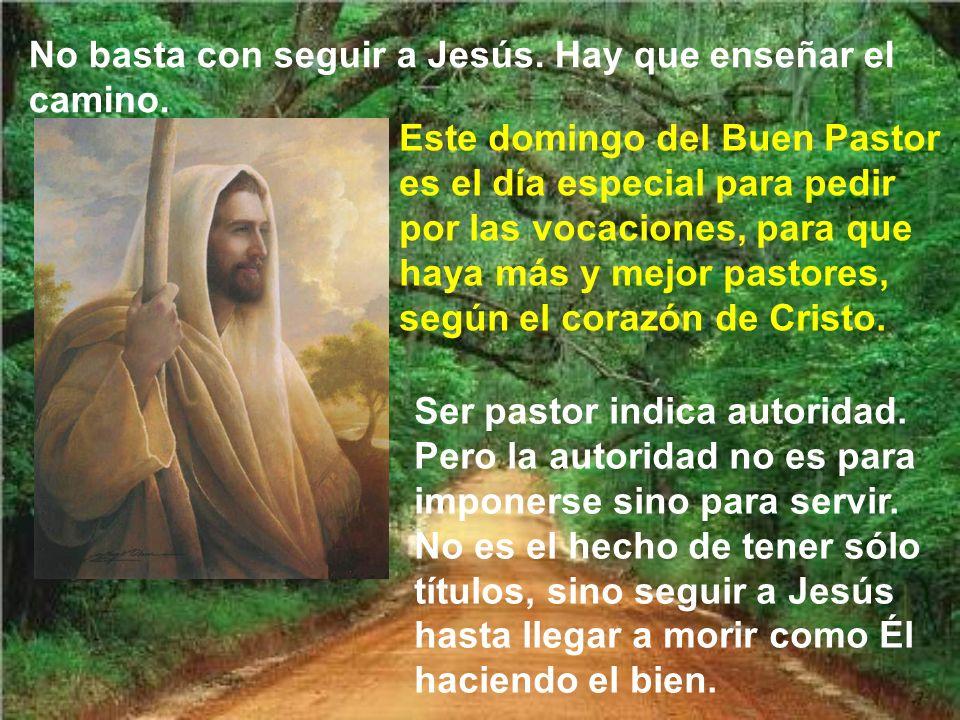 No basta con seguir a Jesús. Hay que enseñar el camino.