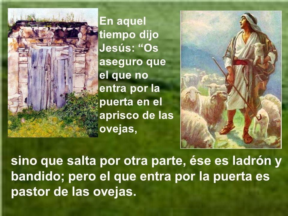 En aquel tiempo dijo Jesús: Os aseguro que el que no entra por la puerta en el aprisco de las ovejas,