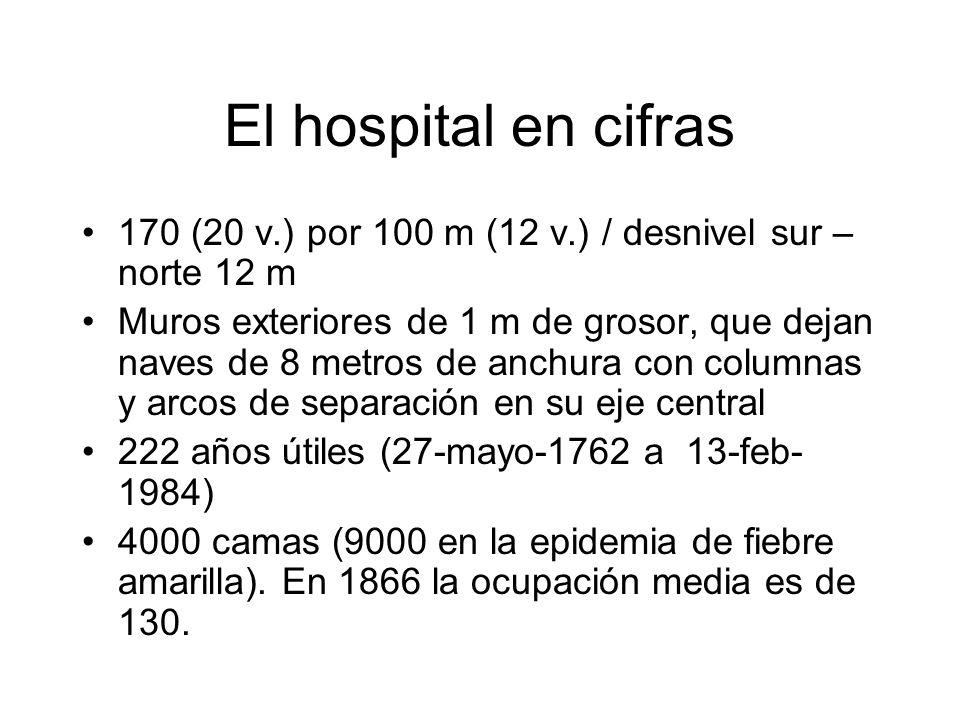 El hospital en cifras 170 (20 v.) por 100 m (12 v.) / desnivel sur – norte 12 m.