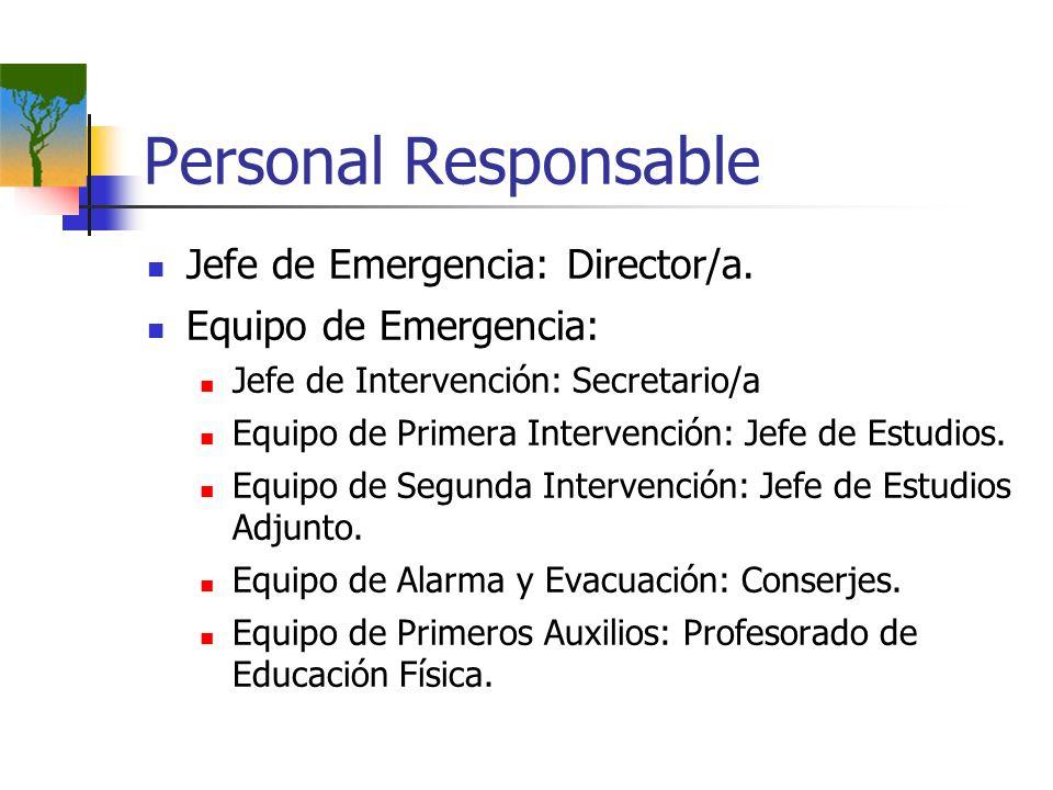 Personal Responsable Jefe de Emergencia: Director/a.