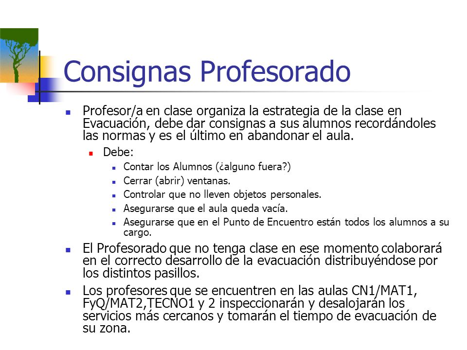 Consignas Profesorado