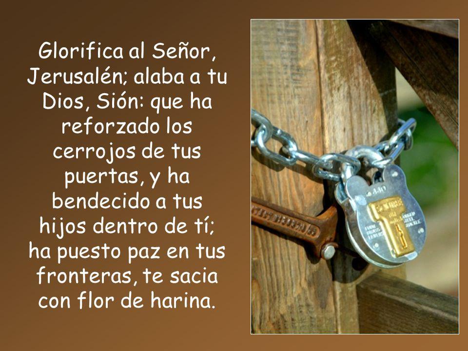 Glorifica al Señor, Jerusalén; alaba a tu Dios, Sión: que ha reforzado los cerrojos de tus puertas, y ha bendecido a tus hijos dentro de tí; ha puesto paz en tus fronteras, te sacia con flor de harina.