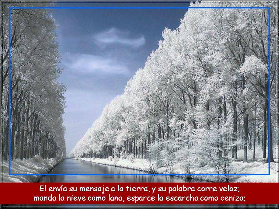 El envía su mensaje a la tierra, y su palabra corre veloz; manda la nieve como lana, esparce la escarcha como ceniza;