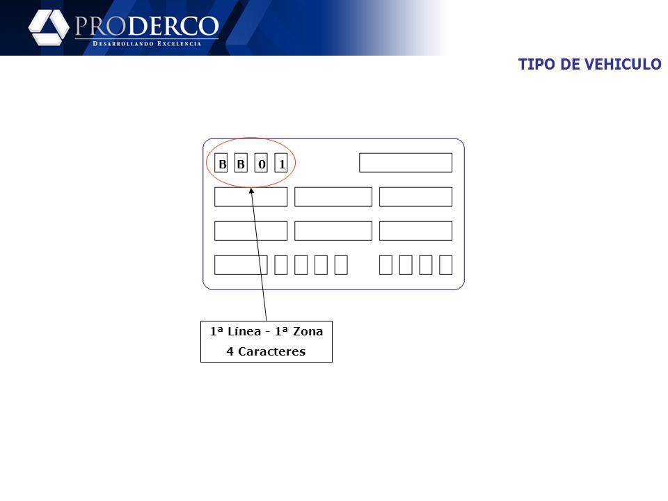 TIPO DE VEHICULO B B 1 1ª Línea - 1ª Zona 4 Caracteres