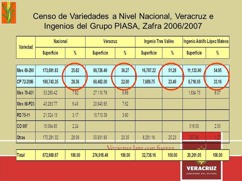 Censo de Variedades a Nivel Nacional, Veracruz e Ingenios del Grupo PIASA, Zafra 2006/2007