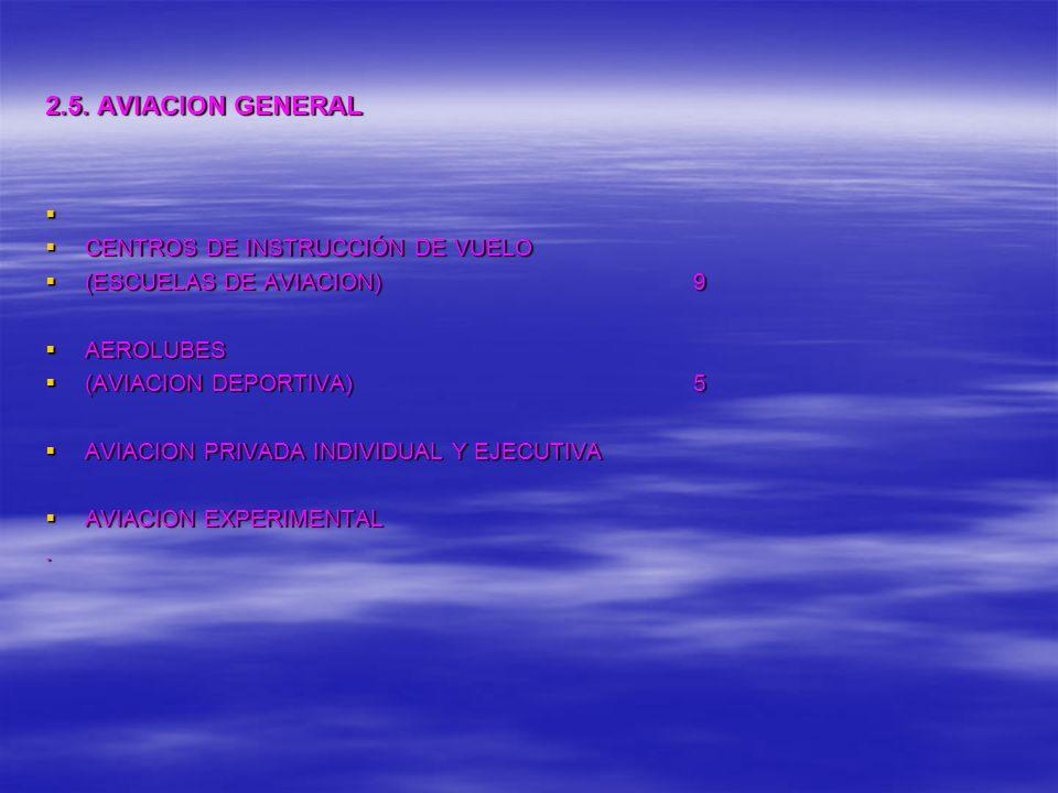 2.5. AVIACION GENERAL CENTROS DE INSTRUCCIÓN DE VUELO