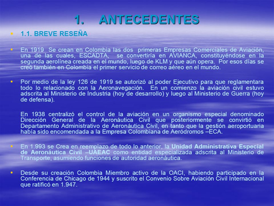 ANTECEDENTES 1.1. BREVE RESEÑA