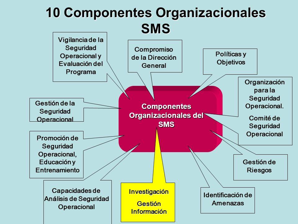 10 Componentes Organizacionales SMS