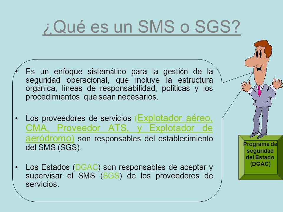 ¿Qué es un SMS o SGS