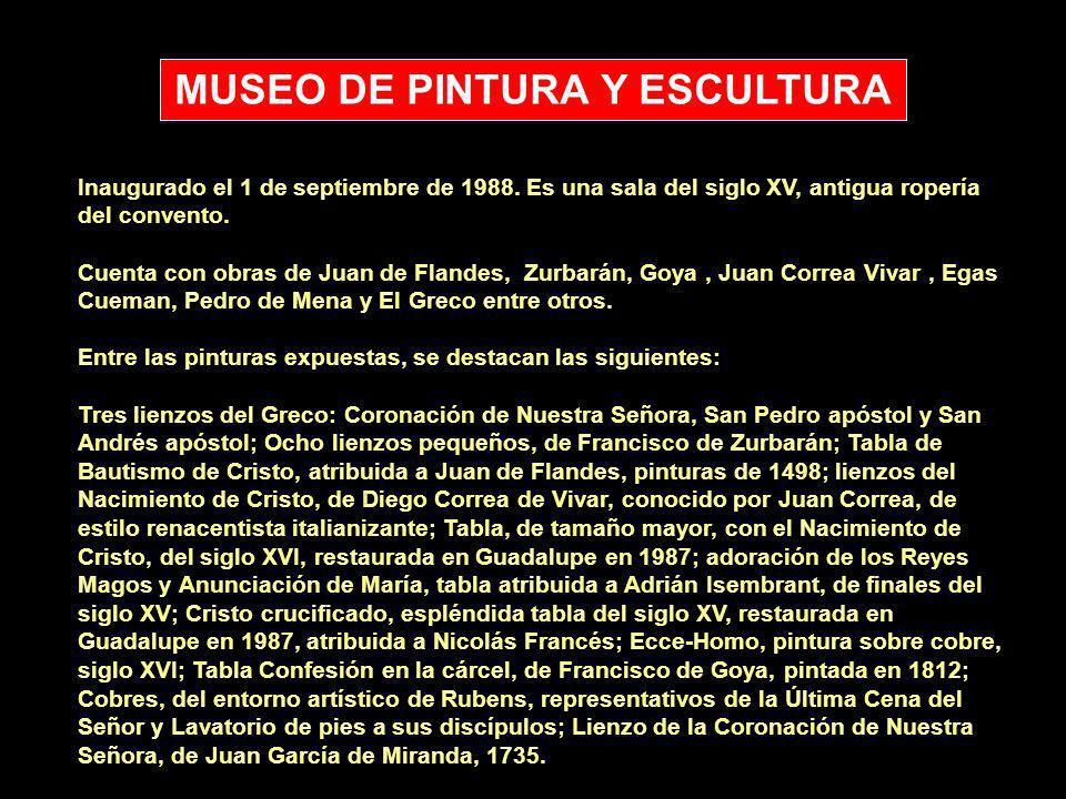 MUSEO DE PINTURA Y ESCULTURA