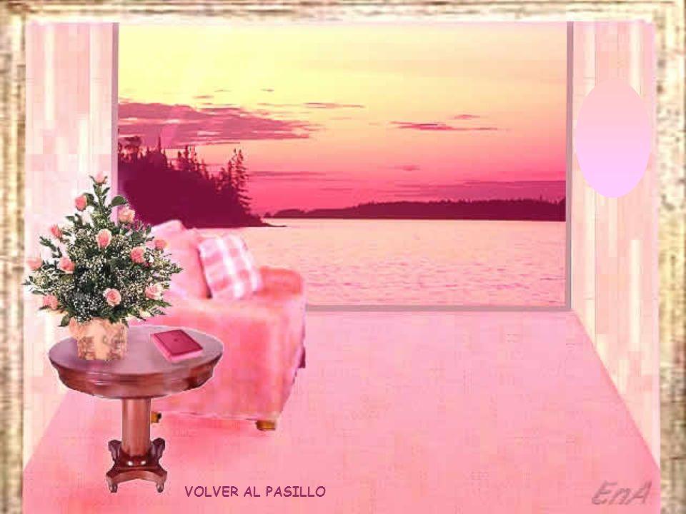 VOLVER AL PASILLO