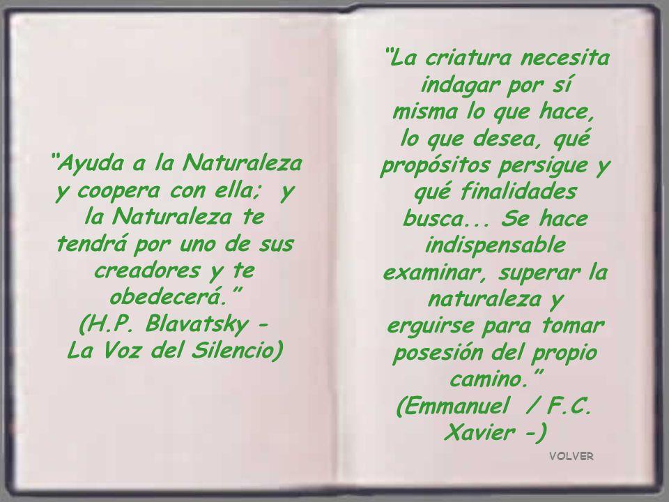 (Emmanuel / F.C. Xavier -)