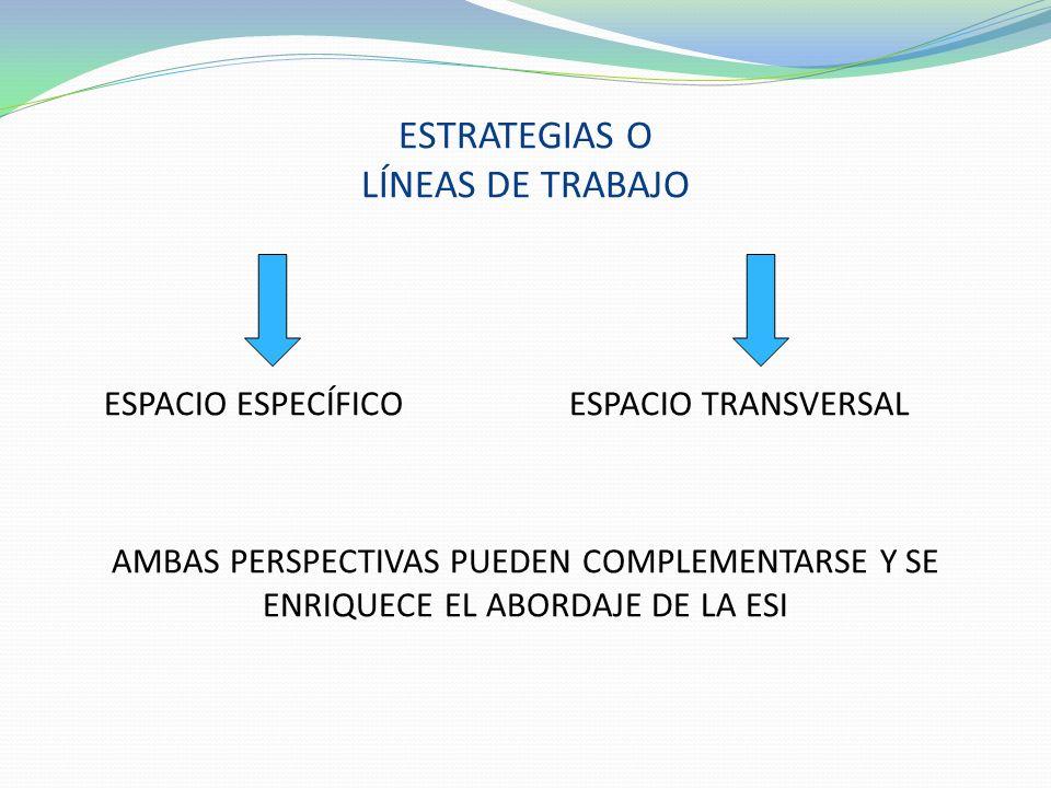 ESTRATEGIAS O LÍNEAS DE TRABAJO
