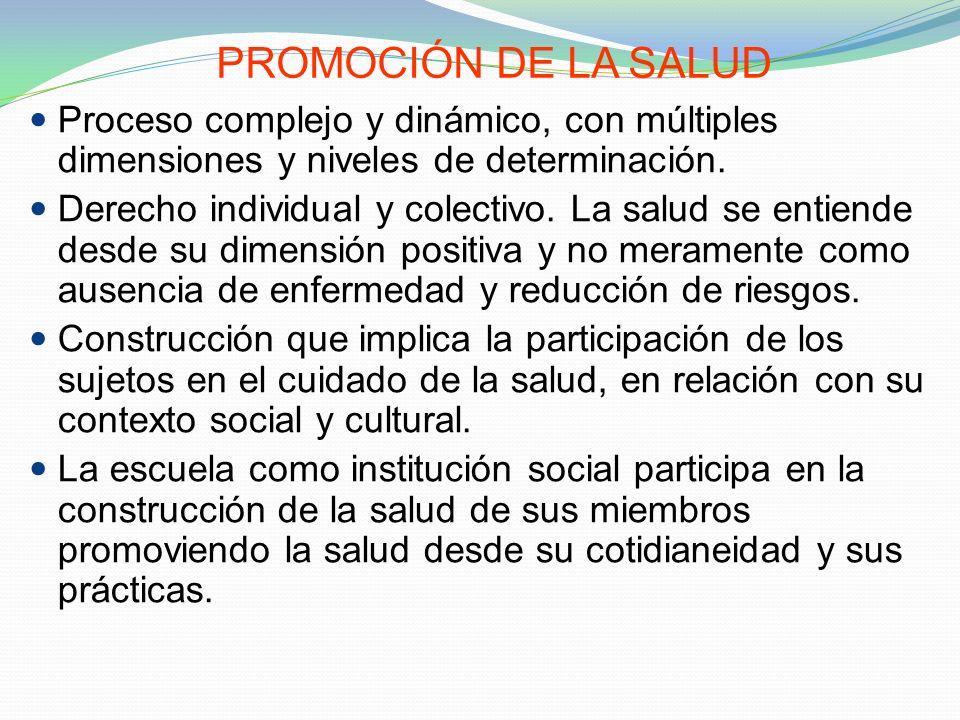 PROMOCIÓN DE LA SALUD Proceso complejo y dinámico, con múltiples dimensiones y niveles de determinación.