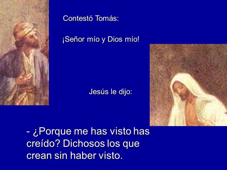 Contestó Tomás: ¡Señor mío y Dios mío. Jesús le dijo: - ¿Porque me has visto has creído.