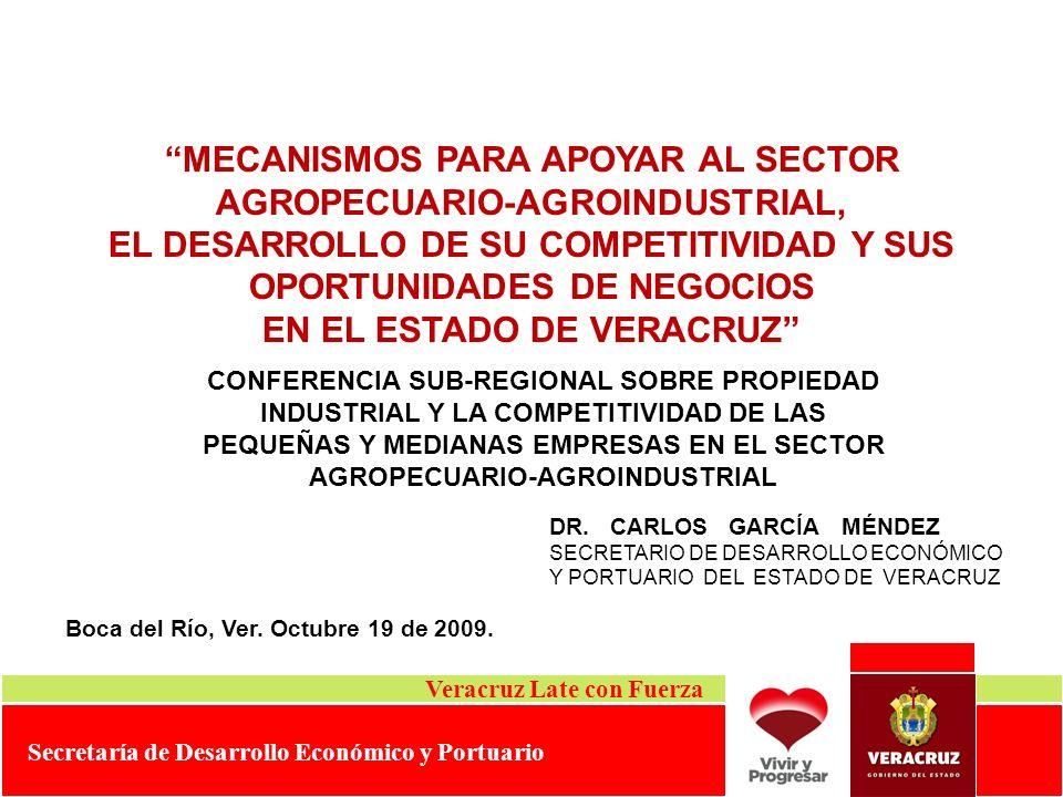 MECANISMOS PARA APOYAR AL SECTOR AGROPECUARIO-AGROINDUSTRIAL,