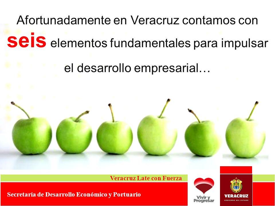 Afortunadamente en Veracruz contamos con seis elementos fundamentales para impulsar el desarrollo empresarial…