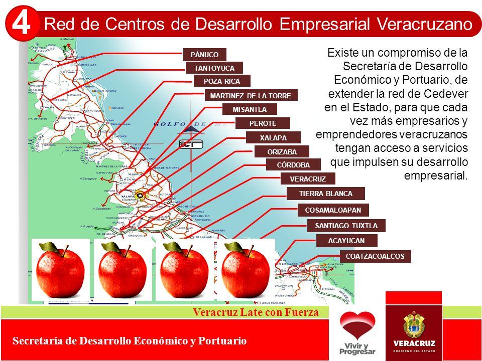 4 Red de Centros de Desarrollo Empresarial Veracruzano