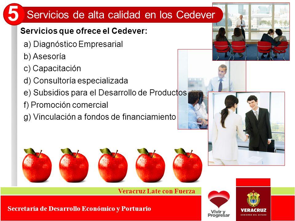 5 Servicios de alta calidad en los Cedever