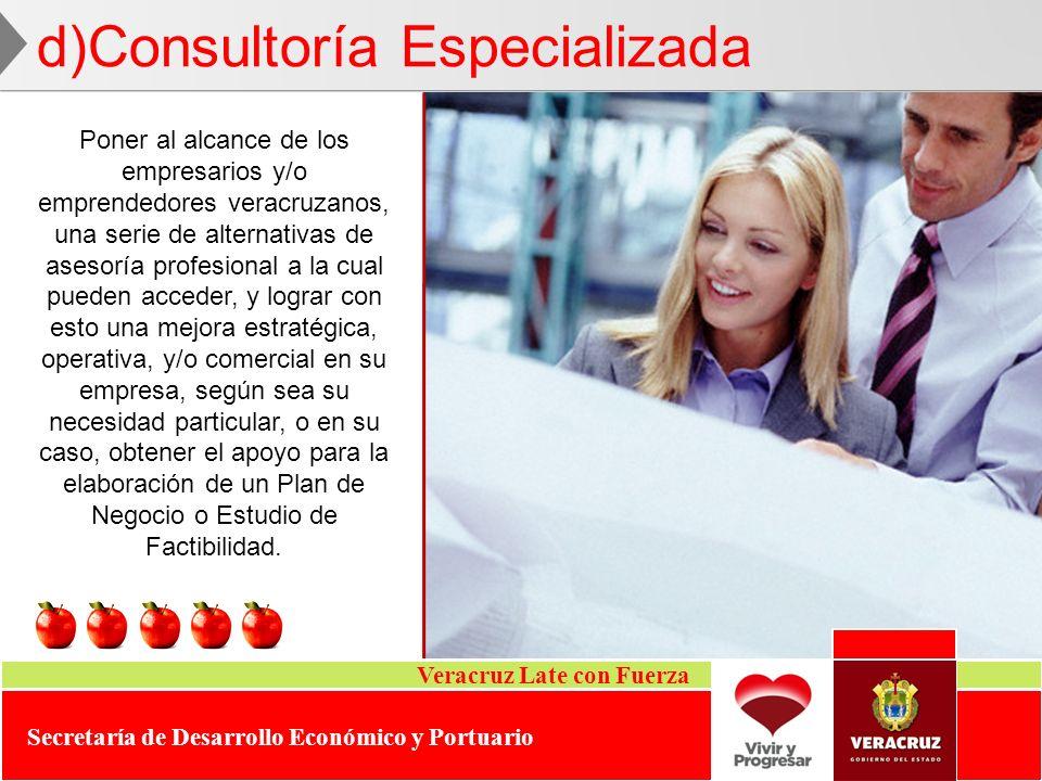 d)Consultoría Especializada