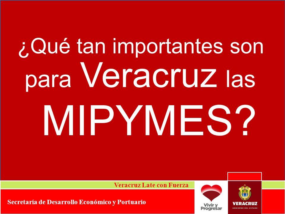 MIPYMES para Veracruz las ¿Qué tan importantes son