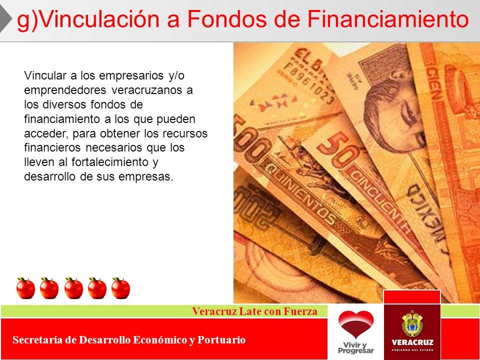 g)Vinculación a Fondos de Financiamiento