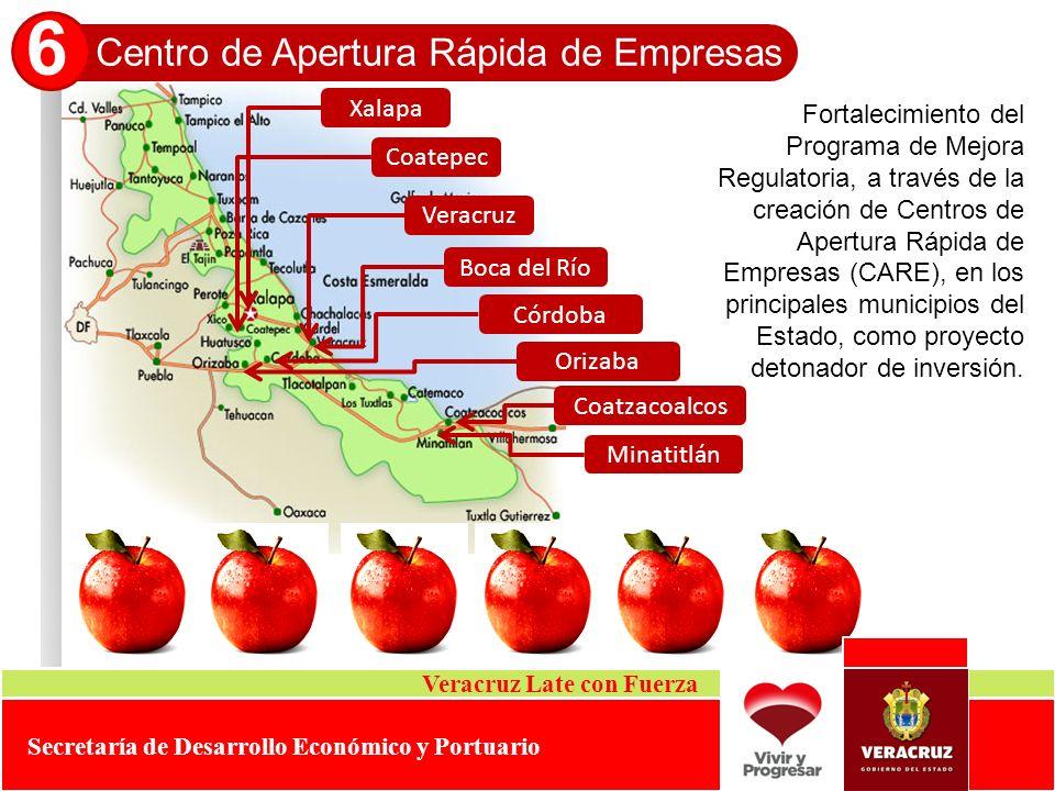 6 Centro de Apertura Rápida de Empresas Xalapa