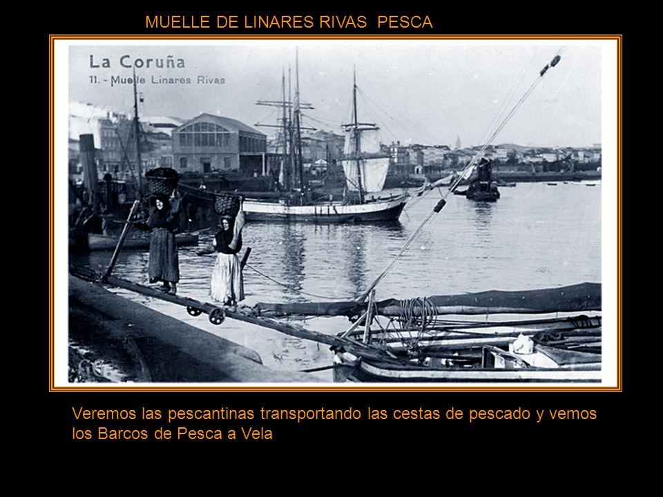 MUELLE DE LINARES RIVAS PESCA
