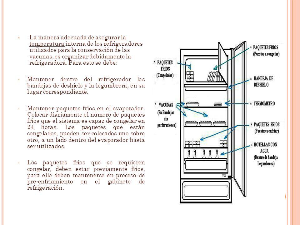 La manera adecuada de asegurar la temperatura interna de los refrigeradores utilizados para la conservación de las vacunas, es organizar debidamente la refrigeradora. Para esto se debe: