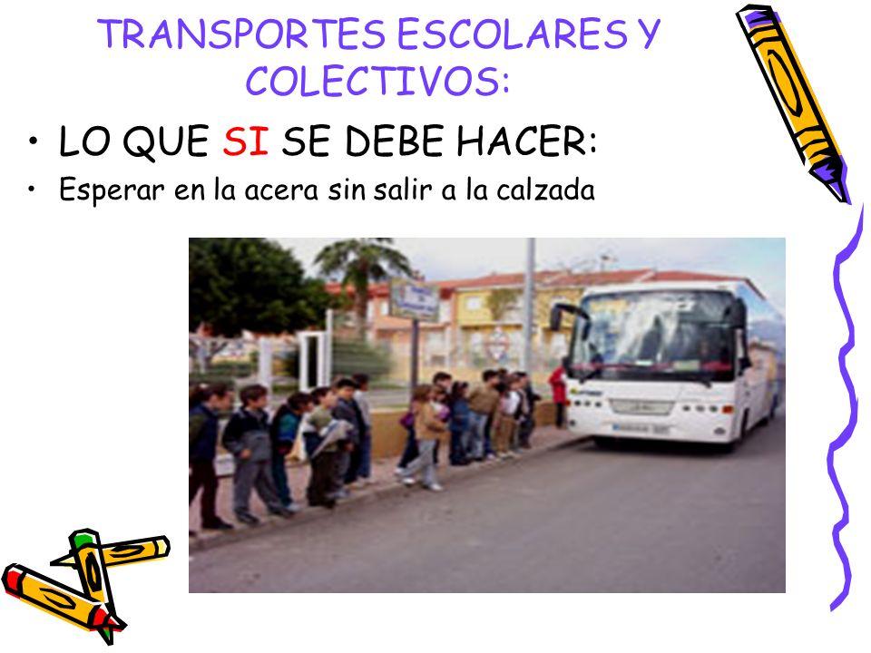 TRANSPORTES ESCOLARES Y COLECTIVOS: