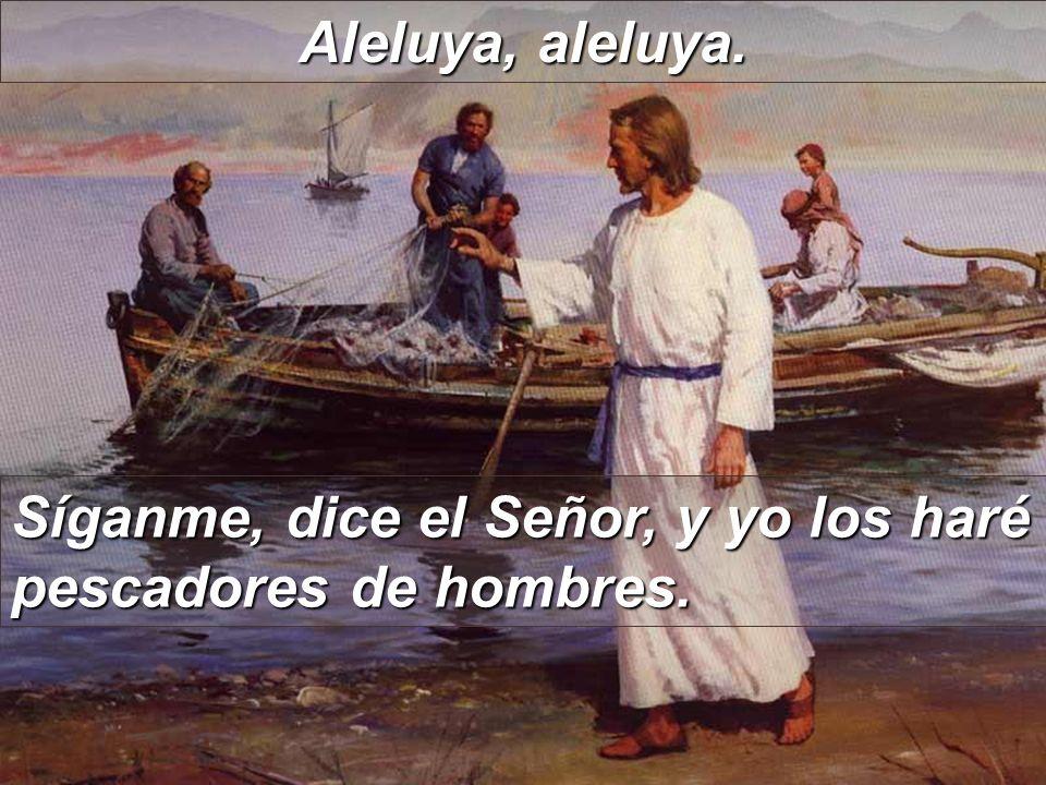 Aleluya, aleluya. Síganme, dice el Señor, y yo los haré pescadores de hombres.