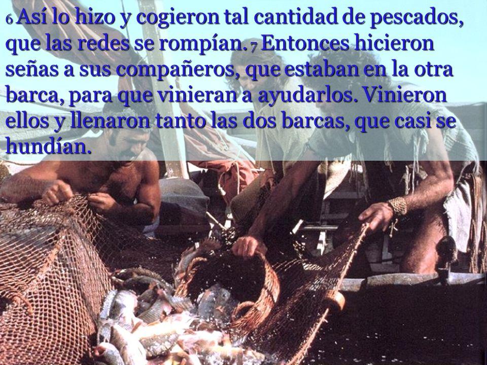 6 Así lo hizo y cogieron tal cantidad de pescados, que las redes se rompían.