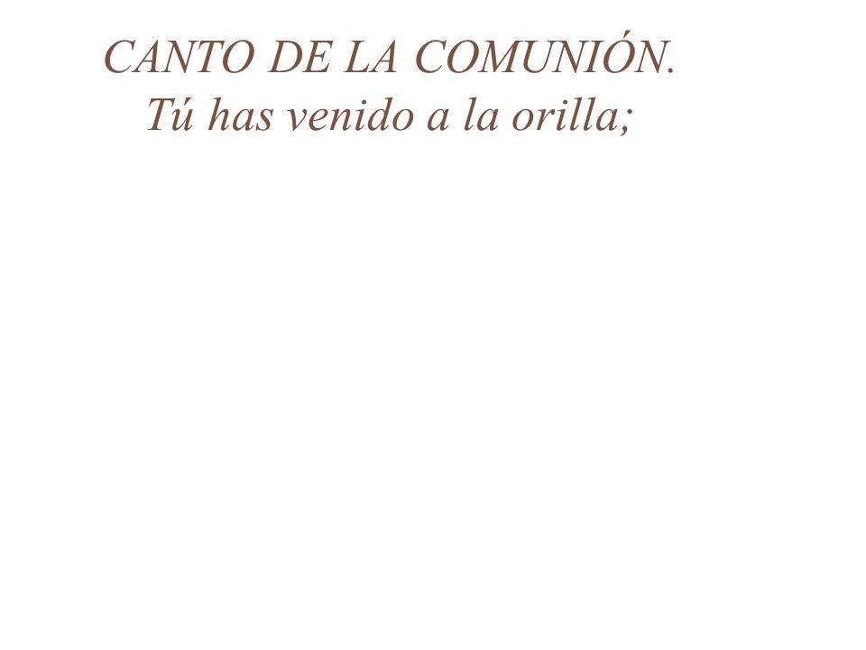 CANTO DE LA COMUNIÓN. Tú has venido a la orilla;