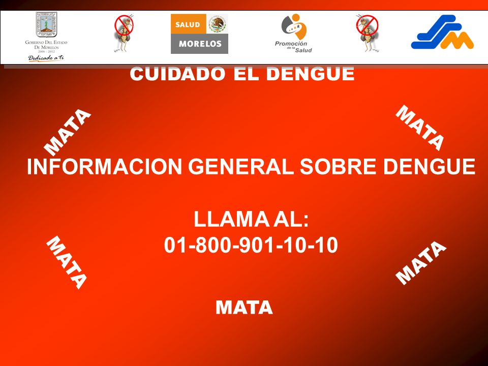 INFORMACION GENERAL SOBRE DENGUE