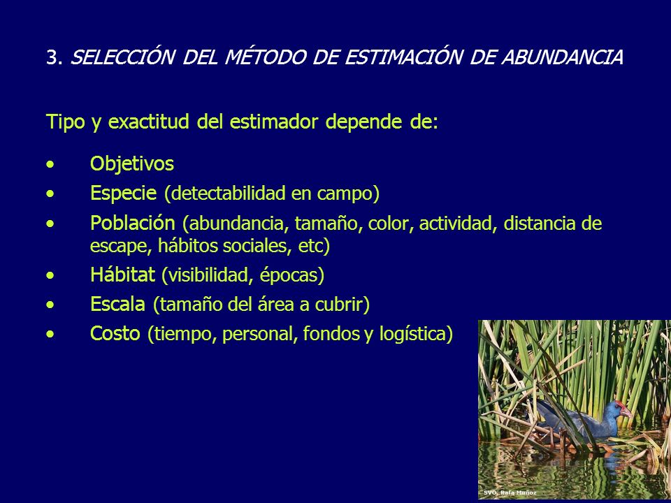 3. SELECCIÓN DEL MÉTODO DE ESTIMACIÓN DE ABUNDANCIA