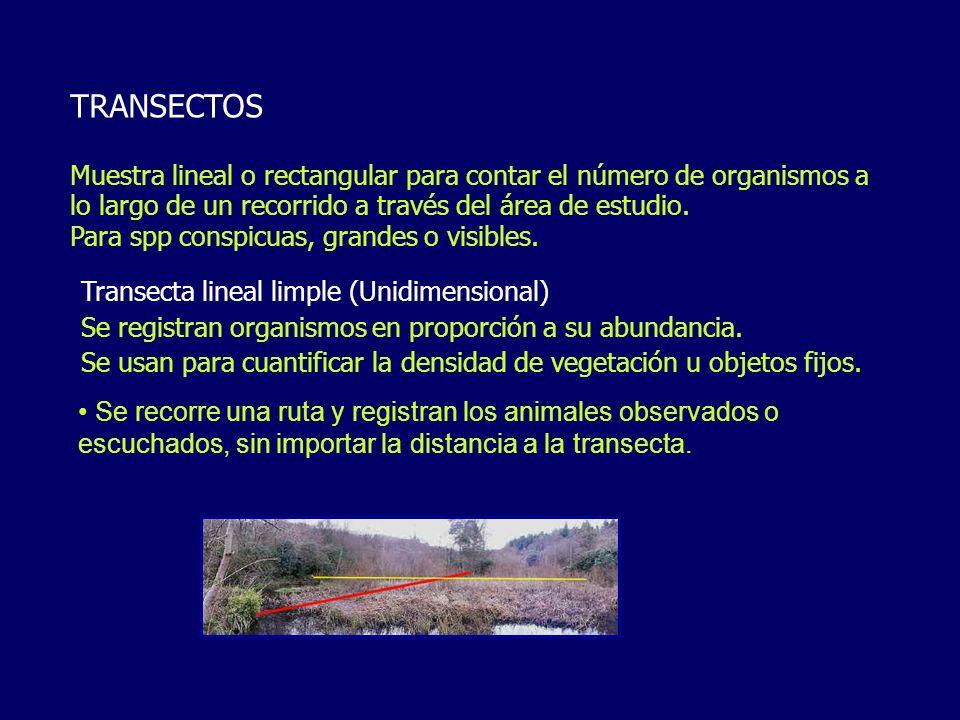TRANSECTOS Muestra lineal o rectangular para contar el número de organismos a lo largo de un recorrido a través del área de estudio.
