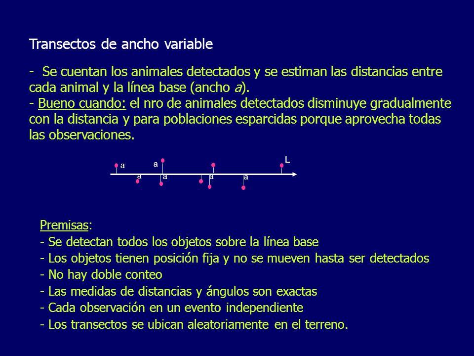 Transectos de ancho variable