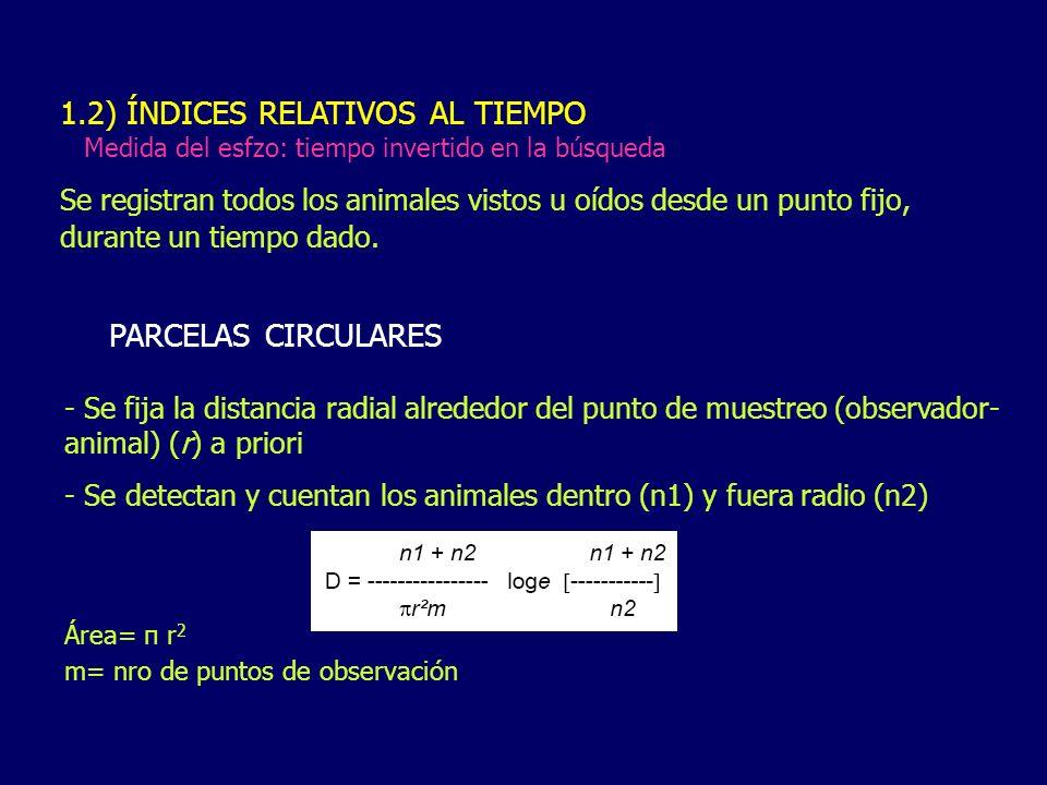1.2) ÍNDICES RELATIVOS AL TIEMPO