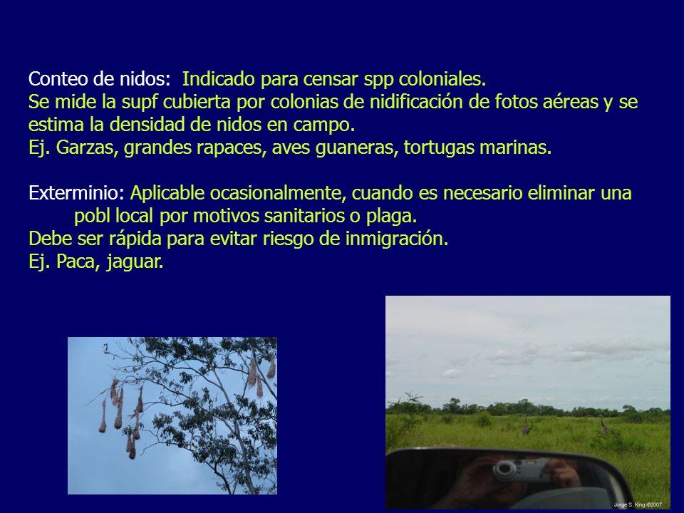 Conteo de nidos: Indicado para censar spp coloniales.