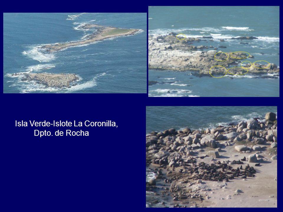 Isla Verde-Islote La Coronilla, Dpto. de Rocha