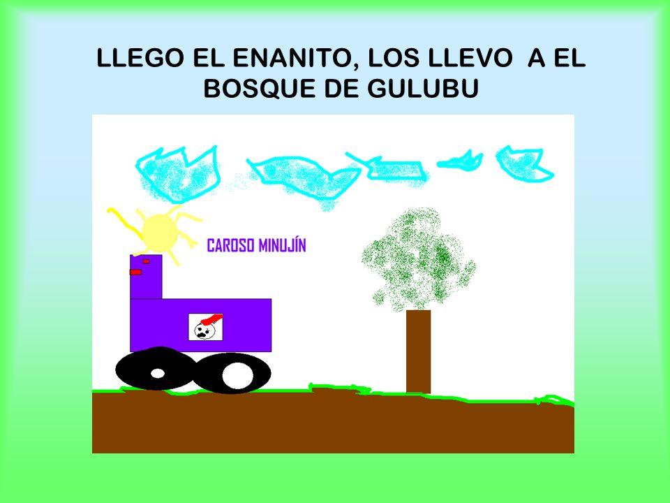 LLEGO EL ENANITO, LOS LLEVO A EL BOSQUE DE GULUBU