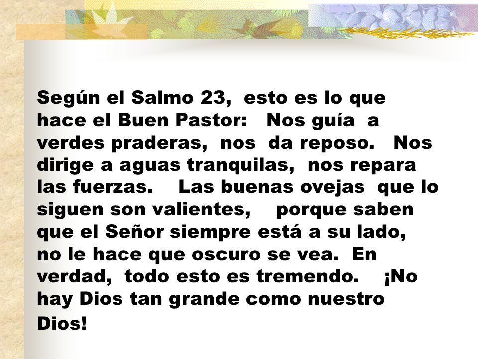 Según el Salmo 23, esto es lo que hace el Buen Pastor: Nos guía a verdes praderas, nos da reposo.