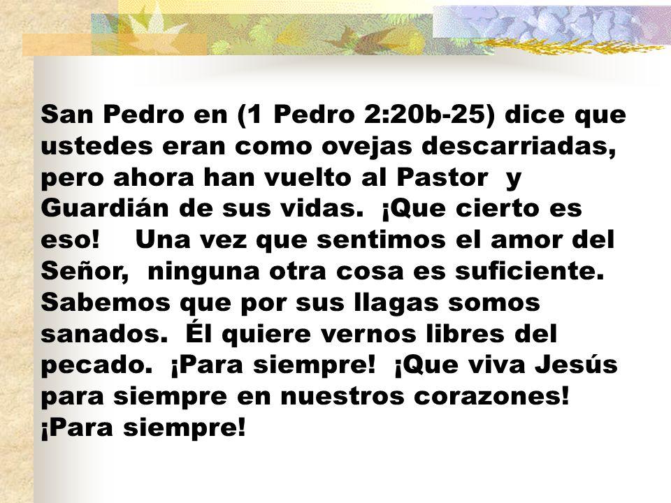 San Pedro en (1 Pedro 2:20b-25) dice que ustedes eran como ovejas descarriadas, pero ahora han vuelto al Pastor y Guardián de sus vidas.