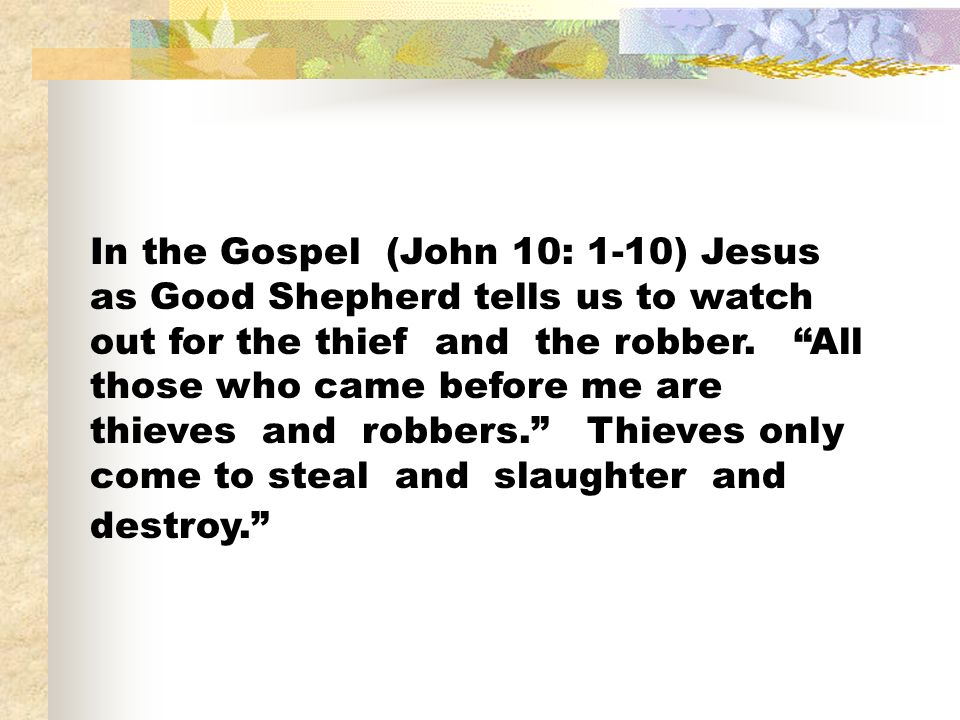 In the Gospel (John 10: 1-10) Jesus as Good Shepherd tells us to watch out for the thief and the robber.