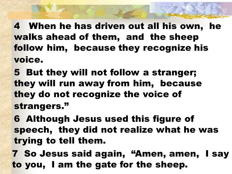 4 When he has driven out all his own, he walks ahead of them, and the sheep follow him, because they recognize his voice.